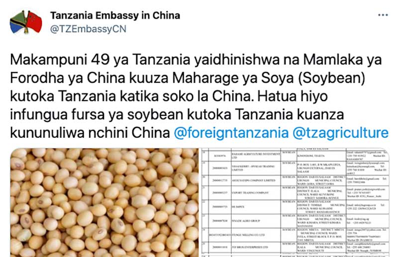 Dozens of Tanzanian Soybean Companies Get the Go-Ahead to Start Exporting to China